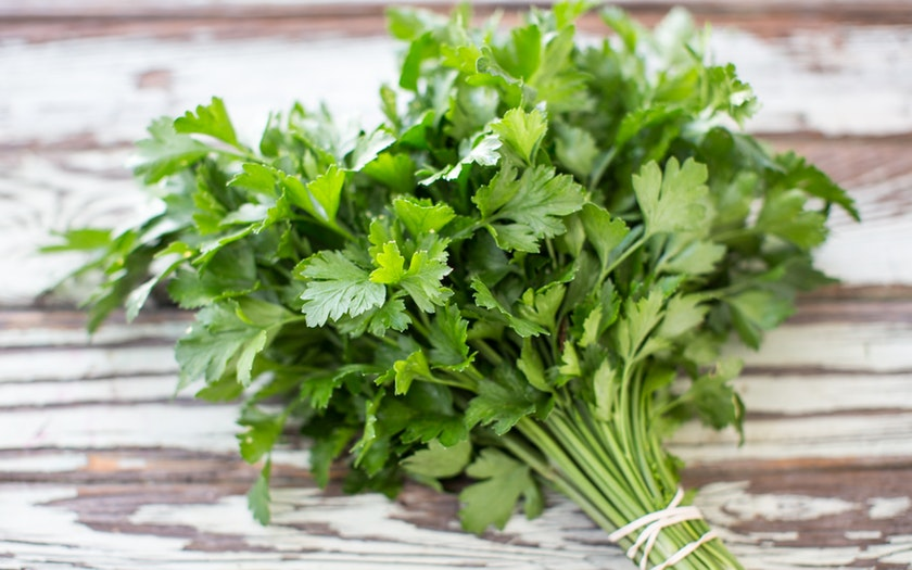 Sweet Valley Italian Parsley